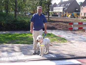 Foto: Dean, een wat pittigere hond die een baasje nodig heeft die weet wat een hond is, en dat kan deze baas perfect.