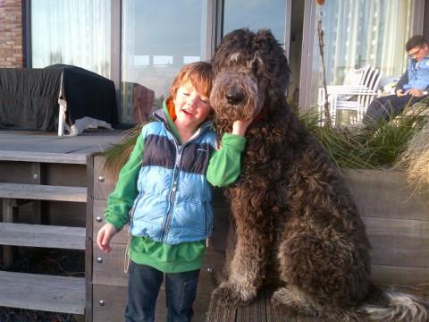 de hond als als grote kindervriend
