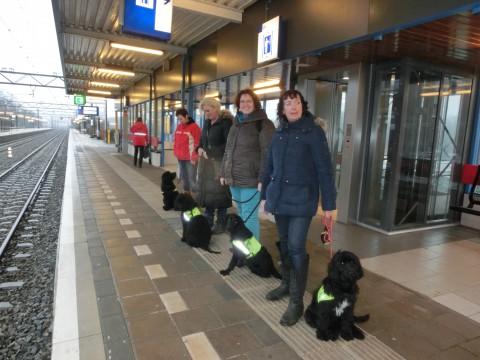 netjes wachten op de trein